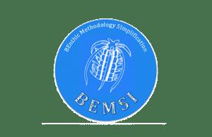 logo-BEMSI