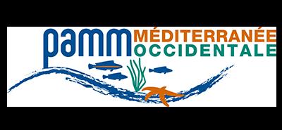 logo-PAMM