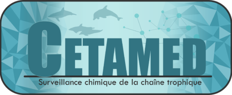 logo-CETAMED