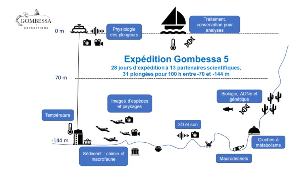 Gombessa-schema-protocole