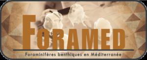 logo-FORAMED