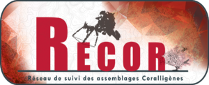 logo-RECOR